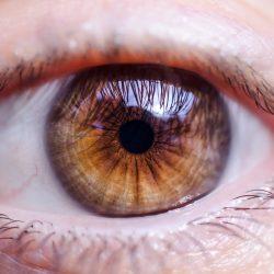 Verräterische Augen